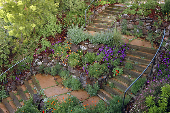 FOUR DIMENSIONS LANDSCAPE COMPANY | landscape architects, landscape contractors, landscapers, gardeners, landscape maintenance, natural landscaping, Oakland, California