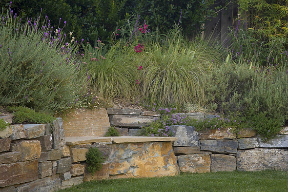 Ornamental grasses, stone bench and wall. Photo © Lee Anne White